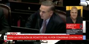 Puella pide la expulsión de Pichetto del Partido Justicialista